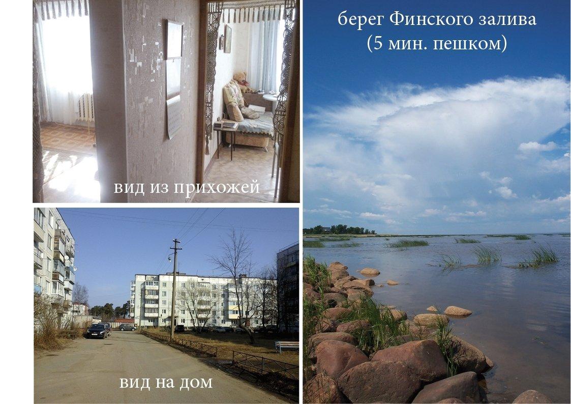квартиры берегу финского залива
