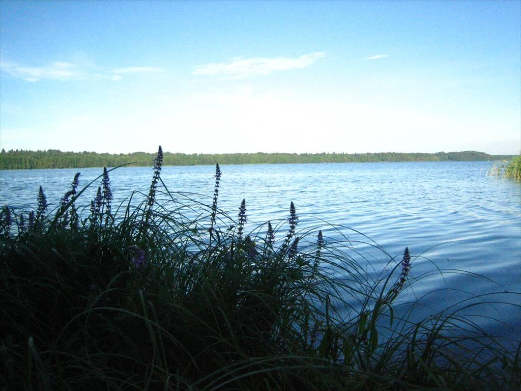 Нарядное озеро рыбалка