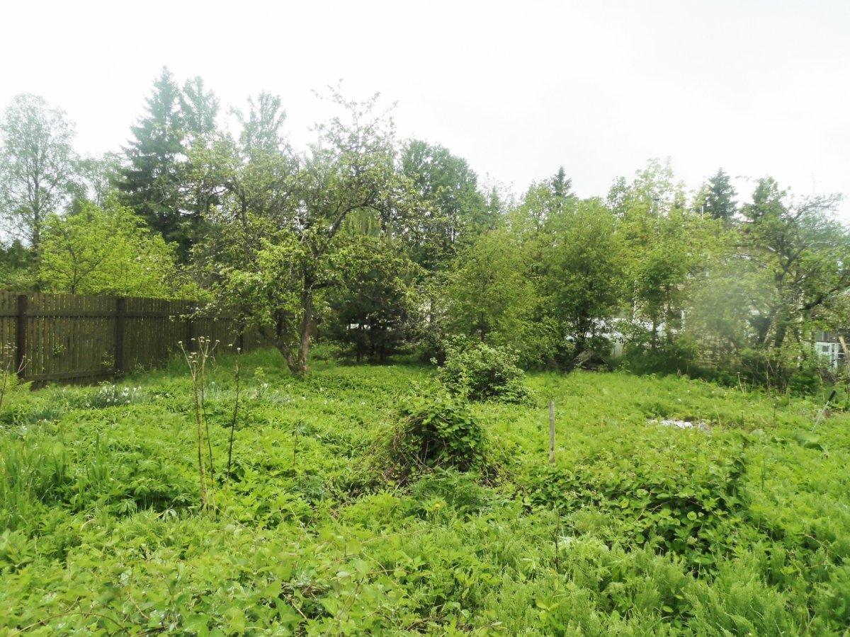 участок в садоводстве в рощино 000