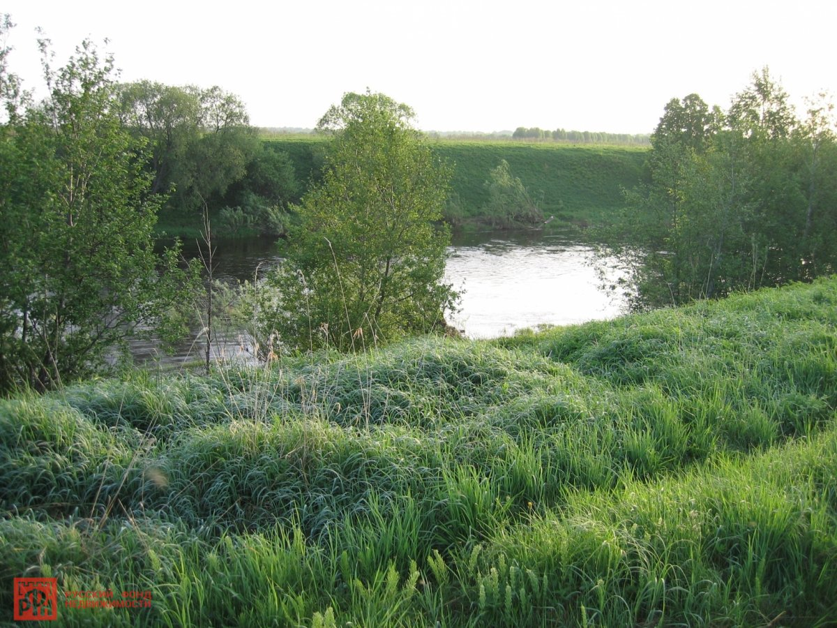 5,7 га земли 577 соток первая линия реки ловать, псковская область, окраина живой и д ...