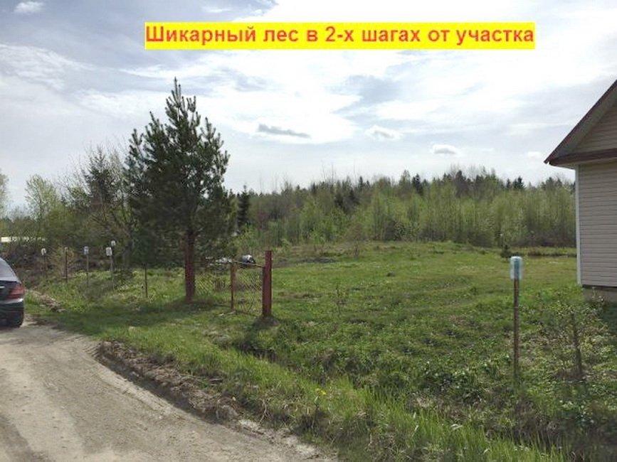 Купить участок в деревне поги