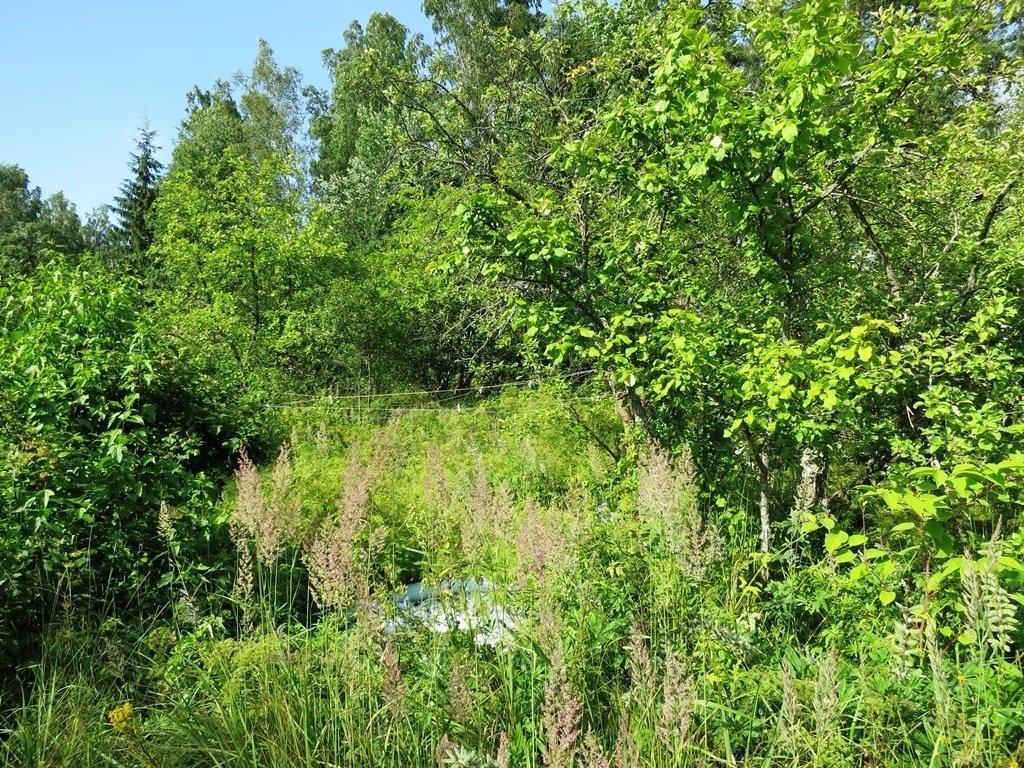 описаны несколько купить участок земли в орехово ленинградская область цветов особое