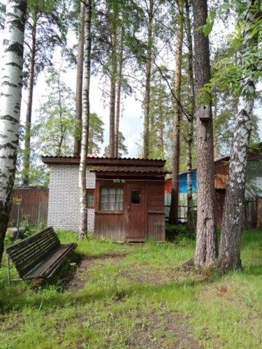 пансионаты в ленинградской области недорого